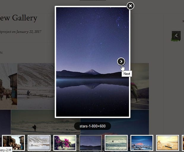 Image Gallery with Next and Previous Buttons