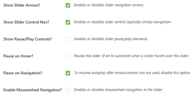 A list of some of the Soliloquy slider navigation settings