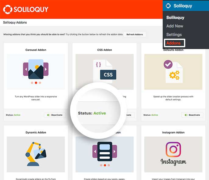 Activate the CSS Addon to begin adding custom CSS to your Soliloquy slider