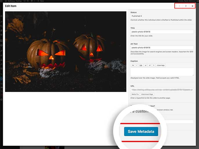 Click Save Metadata to save any changes made to the slider image