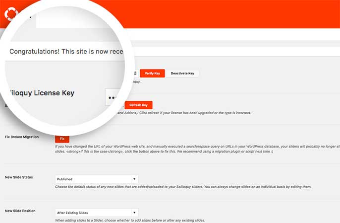 After pasting your license key into the provided field, select the Verify Key button to proceed.