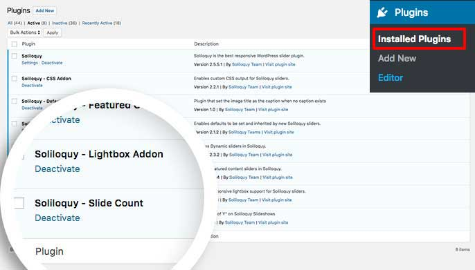 Activate the custom plugin to add a slide count to your Soliloquy sliders