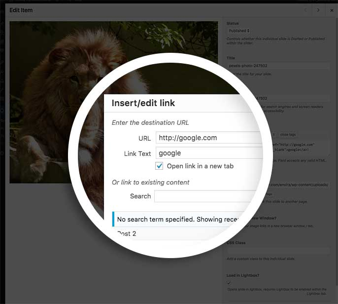 Insert the link information in the Insert/edit link popup