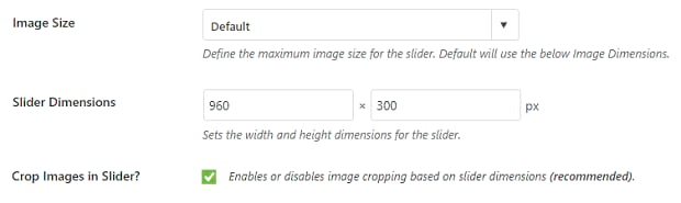 The image size and slider dimensions settings boxes for the Soliloquy plugin