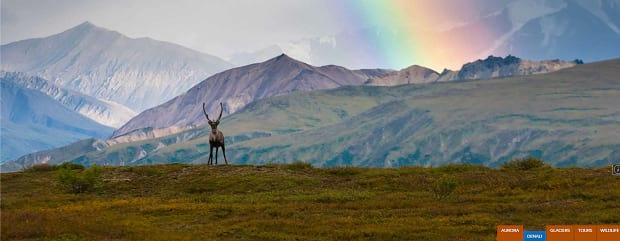 A deer standing on a hill, with a snowy mountain range and a rainbow in the background
