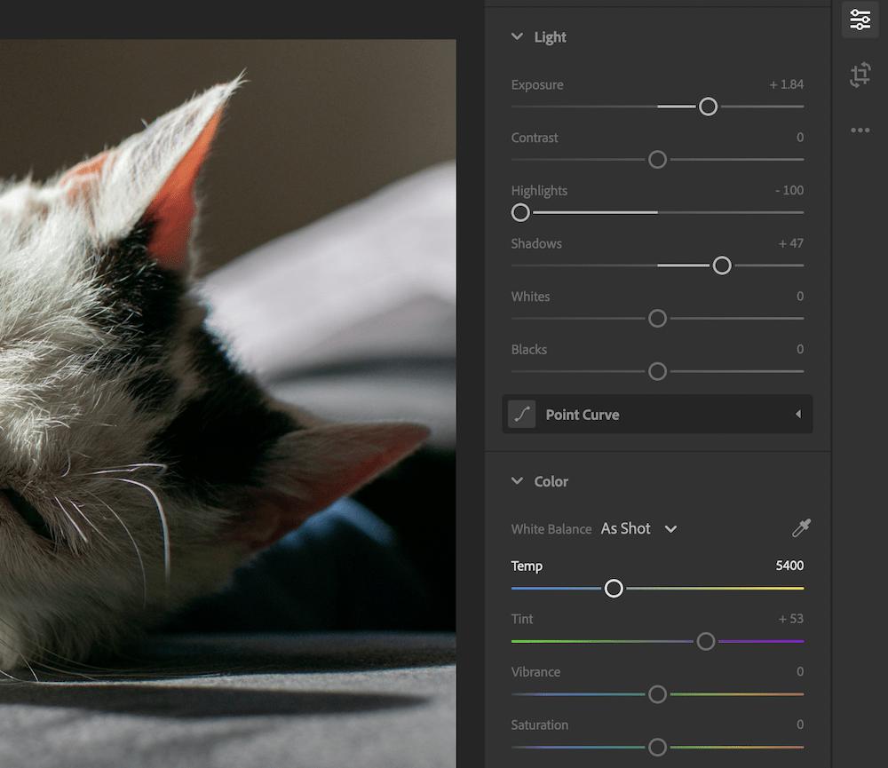 The Adobe Lightroom Light and Color sliders.