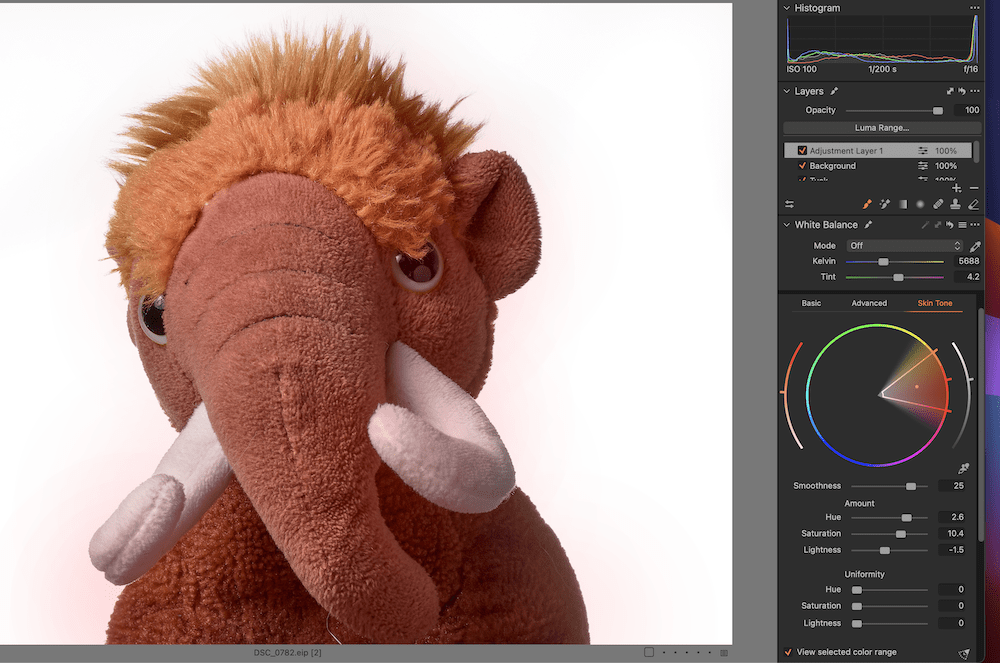 Working with skin tones in Capture One.